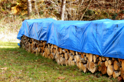 Logs covered by blue tarpaulin